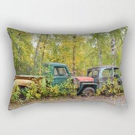 Permanent Fixtures Rectangular Pillow