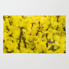 Yellow spring blooming Rug