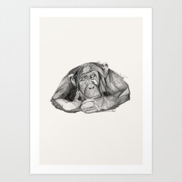 Seven Monkeys – Sloth Art Print