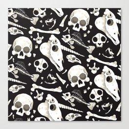 black Skulls and Bones - Wunderkammer Canvas Print
