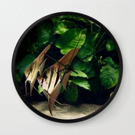 Aquatic dance Wall Clock