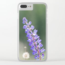 Lupines and dandelions Clear iPhone Case