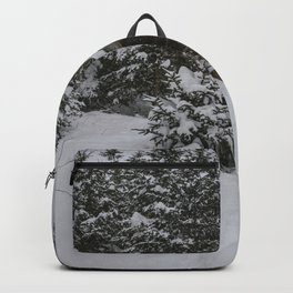 Winter at Lonesome Lake Hut Backpack