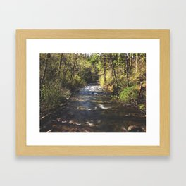 Timewater Framed Art Print
