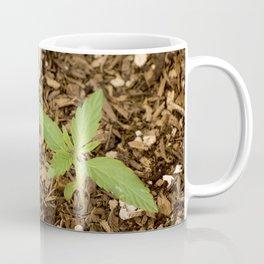 Cannabis Sprout Coffee Mug