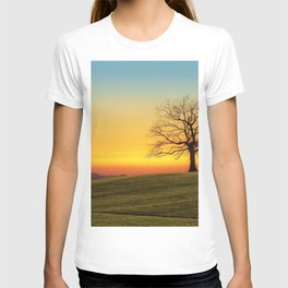 Lonely Tree On Hillside At Sunset Ultra HD T-shirt