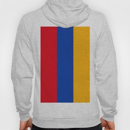 Flag Of Armenia Hoody