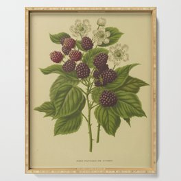 Botanical Blackberries Serving Tray