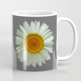 Summer White Daisy on Grey Coffee Mug