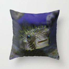 Friendly Fish Smiles Throw Pillow