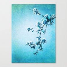 BLUE SPRING Canvas Print
