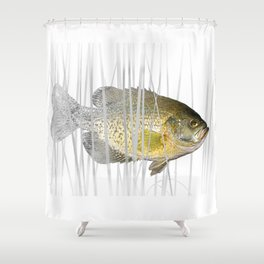 Black Crappie Fish Shower Curtain