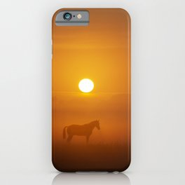 Horse in the morning sun iPhone Case