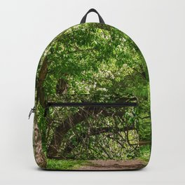 Spring path Backpack