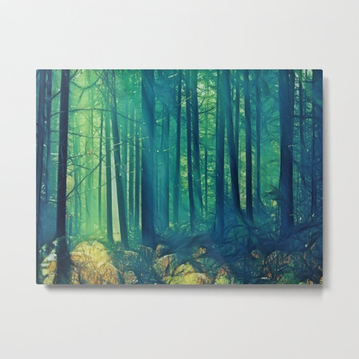 Eyes On The Forest, Not On The Trees. Metal Print