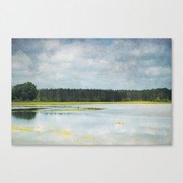 Reflective Field Canvas Print