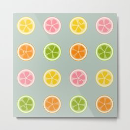 Citrus Fruit Slices Metal Print