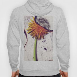 Death Of Beauty Hoody