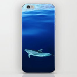 Dolphin and blues iPhone Skin