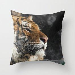 Portrait of a Siberian Tiger Throw Pillow