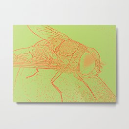 Orange fly Metal Print