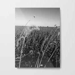 Cornfield Number 1 Metal Print