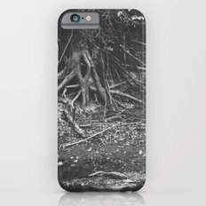 the alligator and the tree  Slim Case iPhone 6s