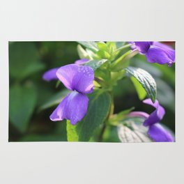 Purple Snap Dragon Flowers Rug