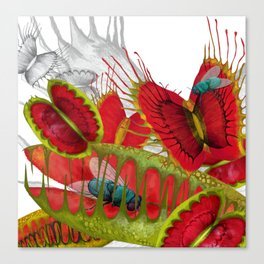 Beautiful And Deadly Canvas Print
