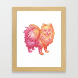 April the Pomeranian Framed Art Print