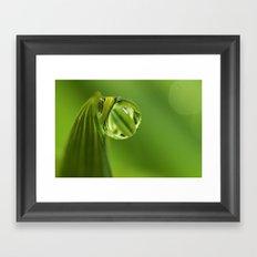 Leaf Green Dew Drop Framed Art Print