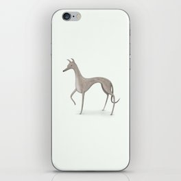 Whippet Portrait iPhone Skin