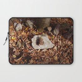 End of a Season Laptop Sleeve