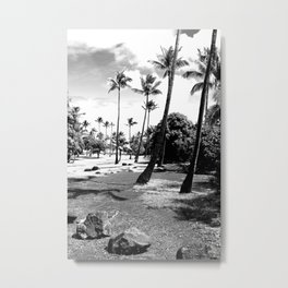palm tree with cloudy sky in black and white Metal Print