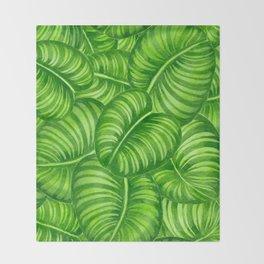 Calathea leaves Throw Blanket