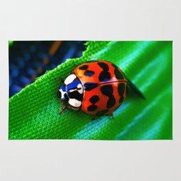 Ladybug on Leave Rug