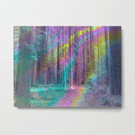 Forest from Inside a Bubble Metal Print