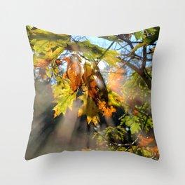 Breath Of Autumn Throw Pillow