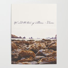 The Tonic Of Wildness Poster