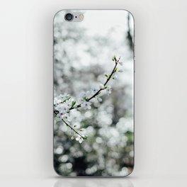 Holland Park #4 iPhone Skin