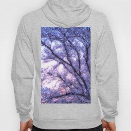 Periwinkle Lavender Flower Tree Hoody