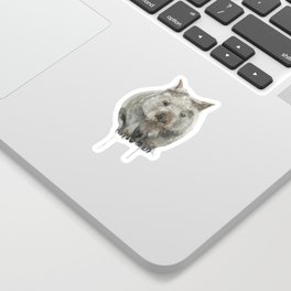Wombat watercolour Sticker