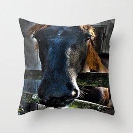 Horse in Repose Throw Pillow