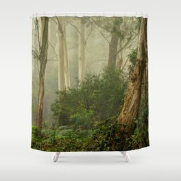 Australian Landscapes - National Parks - Blue Mountains # 4 Shower Curtain
