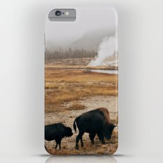 Mother Bison and Calf in Yellowstone National Park iPhone 6 Plus Slim Case