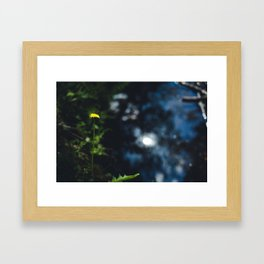 Reflection in the river Framed Art Print