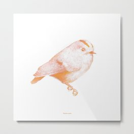 Goldcrest (Regulus regulus) - orange and yellow Metal Print