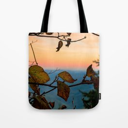 Turned Out to be Just Trees Tote Bag
