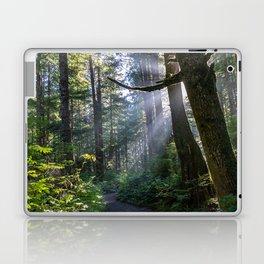 Rain Forest at La Push Laptop & iPad Skin