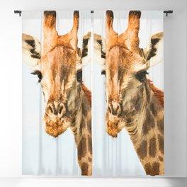 Giraffe watercolor painting #1 Blackout Curtain